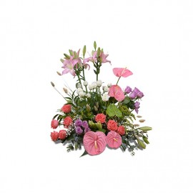 Imported flower dish